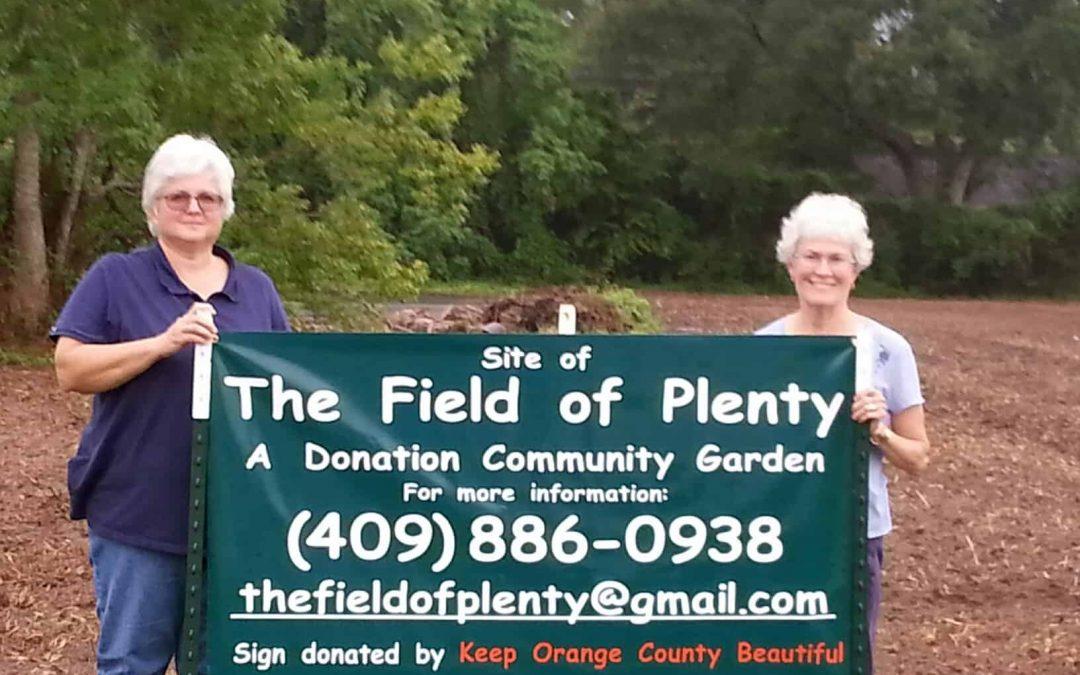 The Field of Plenty
